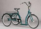 Ally trehjuling för vuxen - Pfiff